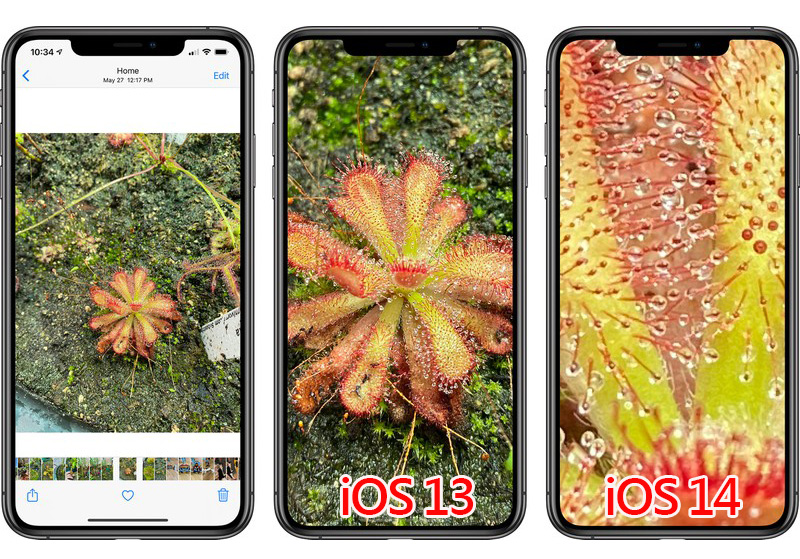 iOS 14 Lets You Zoom Further Into Photos